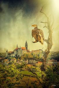 © Mystik Moments Fotografie Meißen/Mario Gast